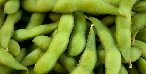 (106) Hipstersnack groene sojabonen